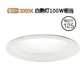 大光電機LEDアウトドアライト軒下用LZW91501YW