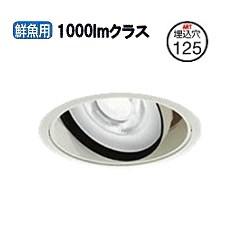 大光電機ユニバーサルダウンライト電源別売 受注生産品LZD91522SW