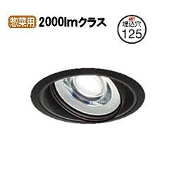 大光電機ユニバーサルダウンライト電源別売 受注生産品LZD91522YBE