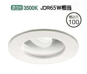 大光電機LED屋外アウトドア(電源装置別売) LZW91622AW