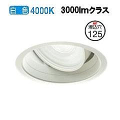大光電機LEDユニバーサルダウンライト(電源装置別売)LZD91950NWE