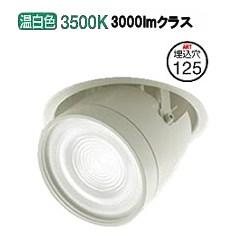 大光電機LEDダウンライト(電源装置別売) LZD91981AW