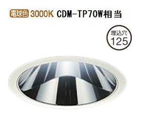 大光電機LEDダウンライト(受注生産品)(電源装置別売)LZD92010YWE