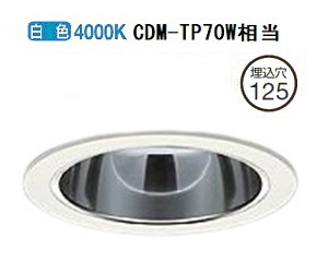 大光電機LEDダウンライト(電源装置別売) LZD92289NWF