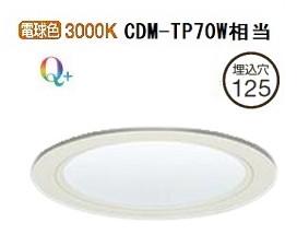 大光電機LEDダウンライト電源別売 受注生産品 LZD92333YWVF