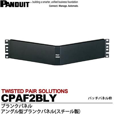 【PANDUIT】アングル型ブランクパネルスチール製ラックユニット数:2UCPAF2BLY