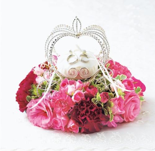Princess fs3gm