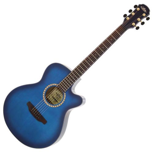 Aria Acoustic Guitar TG-1 SBL アクセサリーセット