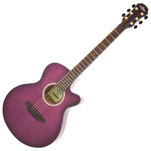Aria Acoustic Guitar TG-1 SPP アクセサリーセット
