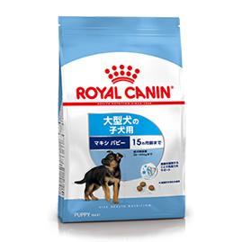 【正規品】 ロイヤルカナン マキシ パピー (大型犬の子犬用 体重26kg以上・生後15ヵ月齢まで) 15kg