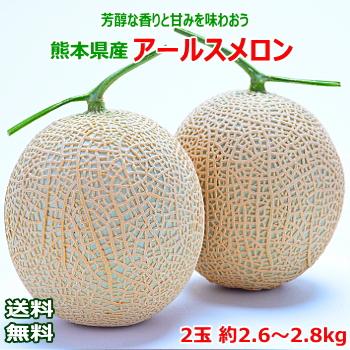 【送料無料】熊本県産 アールスメロン2玉 約2.6~2.8kg