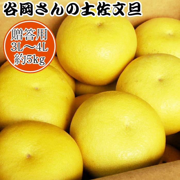 【贈答用】谷岡さんの土佐文旦 3L~4L/5kg