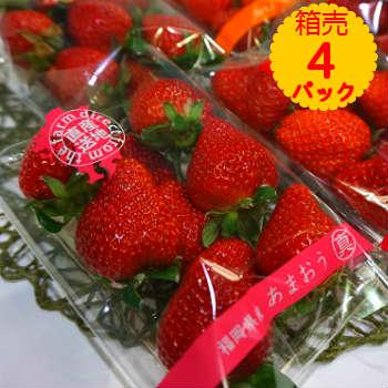 【送料無料】箱売 いちご イチゴ あまおう 博多あまおう 1箱4パック お年賀 ギフト お歳暮