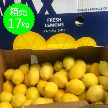 【送料無料】箱売 レモン 1箱(17kg)