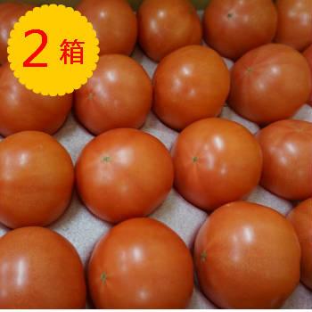 【送料無料】【九州産】箱売り トマト(とまと) 2箱(目安4kg 20~28玉 満杯詰め)