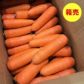 産地直送 業務用 まとめ買い 箱買い 野菜 食品 令和 超美品再入荷品質至上 送料無料 クール便送料無料 箱売り ニンジン 人参 10kg にんじん 1箱 定番の人気シリーズPOINT(ポイント)入荷