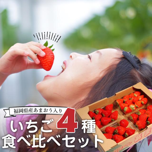【送料無料】いちご イチゴ 食べ比べセット 4種4パック入り(あまおう入ってます)お年賀 ギフト お歳暮