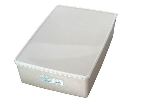 日本製 純銀イオン 鮮度を保つ 抗菌 保存容器 6.6L 10個セット