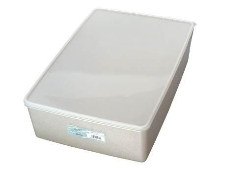 [5の付く日 限定クーポン付] 日本製 純銀イオン 鮮度を保つ 抗菌 保存容器 1.6L 10個セット