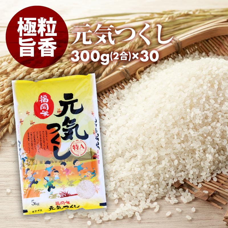 無洗米 プロが選ぶ一等 米 食味ランクA 元気つくし 2合 (300g) 30パック 平成30年産 精米 福岡県産