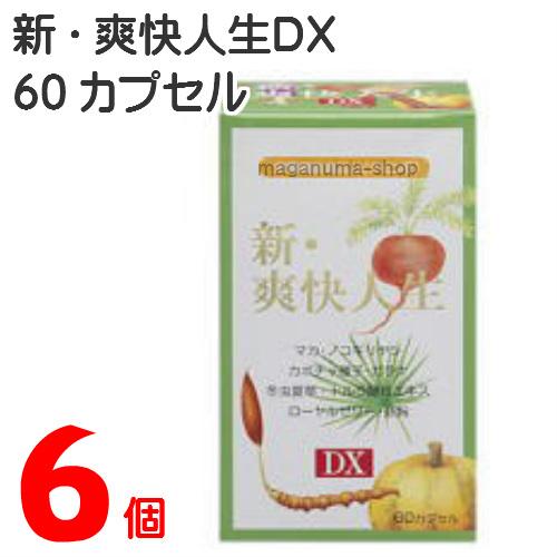 新 爽快人生DX 6個エンチーム