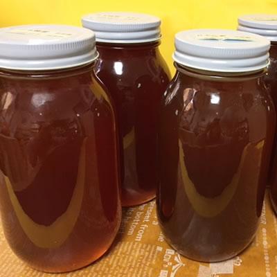 Magoo garden domestic hyakka honey honey economical 1 kg 02P03Dec16