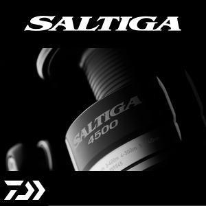 【取り寄せ商品】ダイワ 15ソルティガ 5000 DAIWA SALTIGA【送料無料】