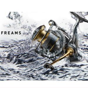 ダイワ 18フリームス LT3000D-C DAIWA FREAMS