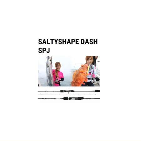 最大80%オフ! テイルウォーク ソルティシェイプダッシュスローピッチジャーク【684】Tailwalk SALTYSHAPE DASH SALTYSHAPE SPJ, ハツカイチシ:3e9ffa68 --- totem-info.com
