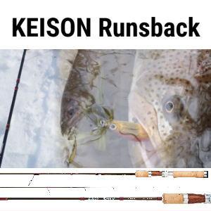 テイルウォーク ケイソンランズバック 【S66ML】 Tailwalk KEISON Runsback