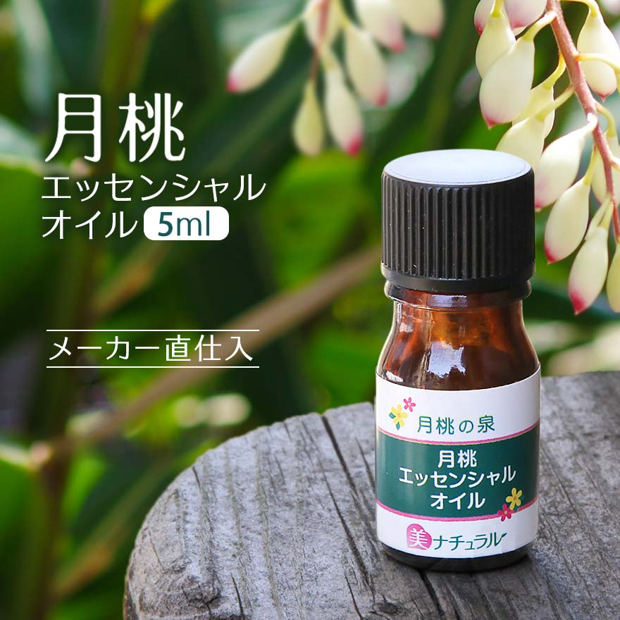 月桃エッセンシャルオイル5ml (精油)ホントにすごい、美容エッセンス薬草のような香り成分が若々しく健康美人に導きます!