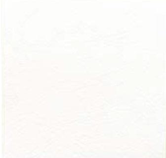 【最安値挑戦中!最大34倍】LIXIL 【ECP-3031T/FMN1N(ホワイト) 22枚入/ケース】 303角片面小端仕上げ フェミーナ エコカラットプラス [♪]