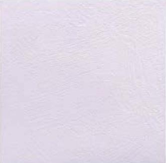 【最安値挑戦中!最大34倍】LIXIL 【ECP-3031T/FMN2N(ラベンダー)22枚入/ケース】 303角片面小端仕上げ フェミーナ エコカラットプラス [♪]