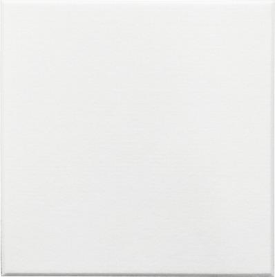 【最安値挑戦中!最大34倍】井上金庫 【FBM-4040C-WH(ホワイト) 30枚入/ケース】 フェルメノン 吸音パネル45C マグネット付 400×400mm 厚9mm 400角 [♪▲▲]