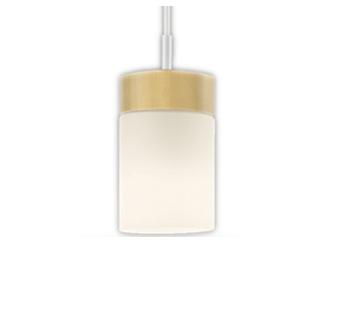【最安値挑戦中!最大25倍】オーデリック OP252432LC(ランプ別梱包) ペンダントライト LED電球一般形 電球色 白熱灯60W相当 調光器別売 フレンジタイプ