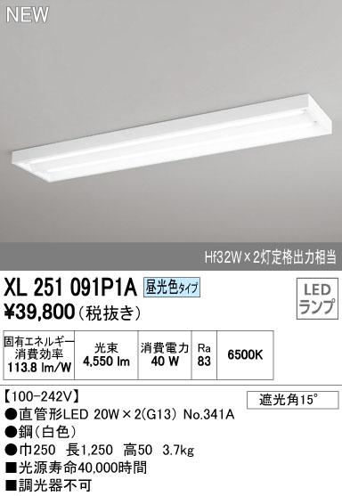 【最安値挑戦中!最大34倍】照明器具 オーデリック XL251091P1A(ランプ別梱) ベースライト 直管形LEDランプ 直付型 下面開放型 2灯用 昼光色 [(^^)]