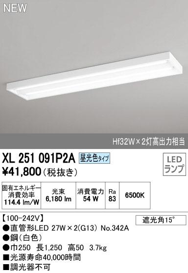 【最安値挑戦中!最大34倍】照明器具 オーデリック XL251091P2A(ランプ別梱) ベースライト 直管形LEDランプ 直付型 下面開放型 2灯用 昼光色 [(^^)]