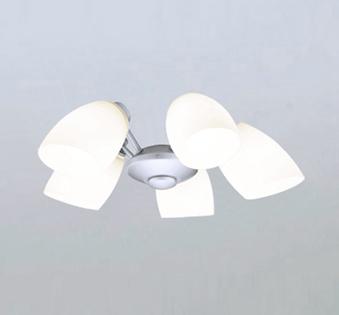 【最安値挑戦中!最大25倍】オーデリック WF806NC1(ランプ別梱) シーリングファン LEDランプ 連続調光 昼白色 乳白ケシガラス・5灯 マットシルバー ~6畳