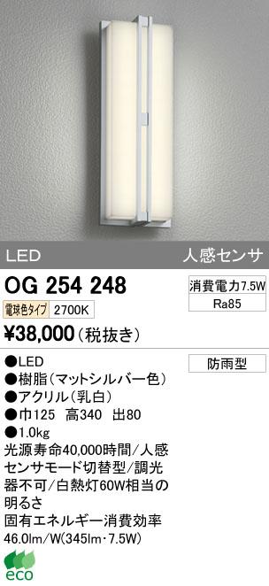 【最安値挑戦中!最大34倍】ポーチライト オーデリック OG254248 LED 電球色 [∀(^^)]