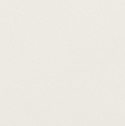 【最安値挑戦中!最大25倍】LIXIL 【ECP-3031T/NTC1FN(ホワイト) 22枚入/ケース】 303角片面小端仕上げ(フラット) ニュートランス エコカラットプラス [♪【追加送料あり】]