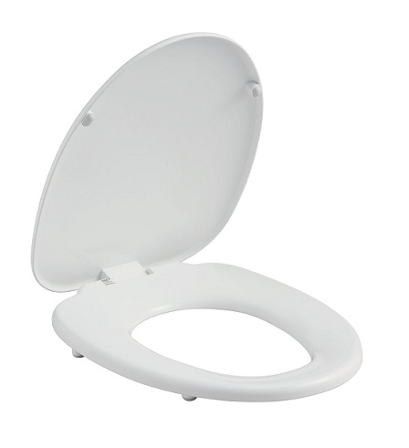 Terrific Fixation Type With Inax Cf 39Ak Normal Toilet Seat Large Size Cover Pdpeps Interior Chair Design Pdpepsorg