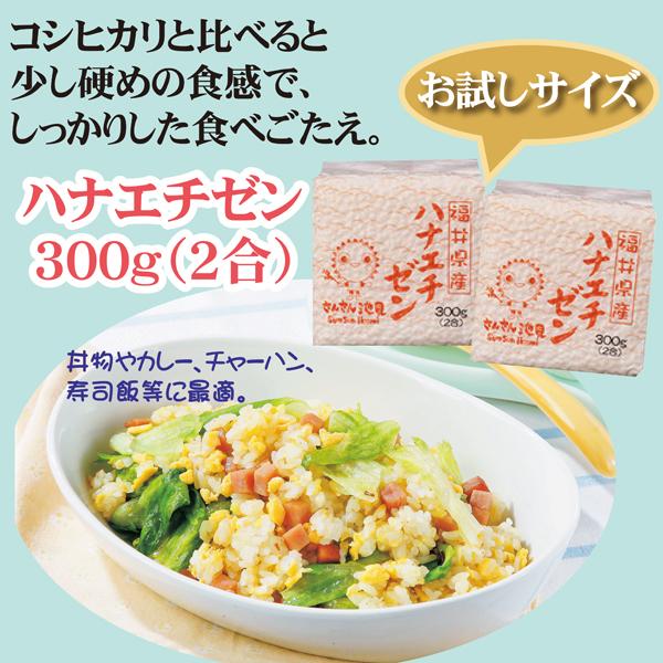 福井県産 特売 華越前 2合 春の新作続々 お米 ハナエチゼン 300g 米