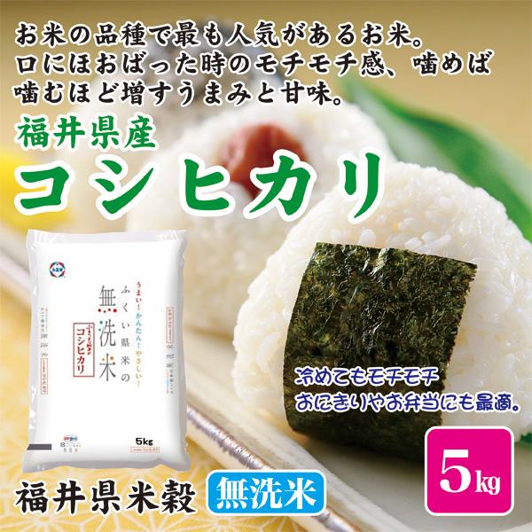 うまい かんたん やさしい お米 米5kg 福井県産 無洗米 こしひかり 福井県米穀 米 高級 期間限定特価品 コシヒカリ