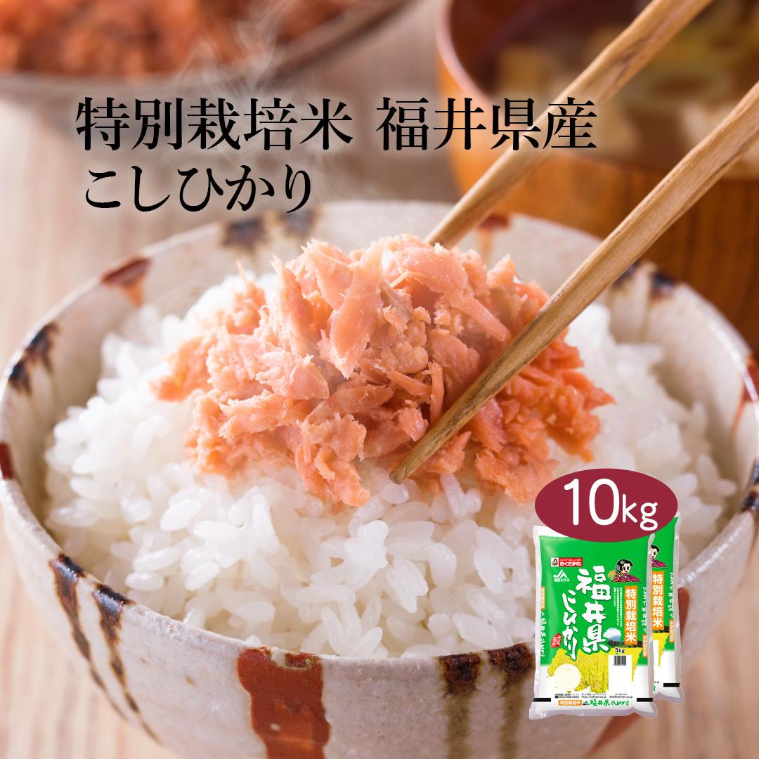 おいしいお米を追及して農薬 化学肥料の使用を減らしたお米です モチモチ食感と甘みがあり ツヤのある炊きあがり 米 10キロ こめ おこめ 令和二年 2020年 コシヒカリ ギフト 送料無料 福井県産 送料込み 令和2年産 特別栽培米 公式ストア 5kg×2袋 おくさま印 単一原料米 公式サイト 10kg ※沖縄 白米 お米 離島除く こしひかり