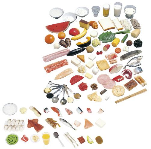 糖尿病指導キット(一単位80kcal) 規格:1~50品セット(磁石付) 24-4508-01