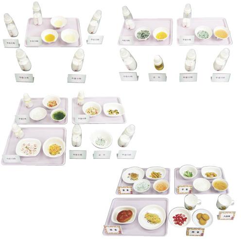 離乳食献立モデル(Aタイプ) 規格:5~6ヶ月頃 24-4510-01