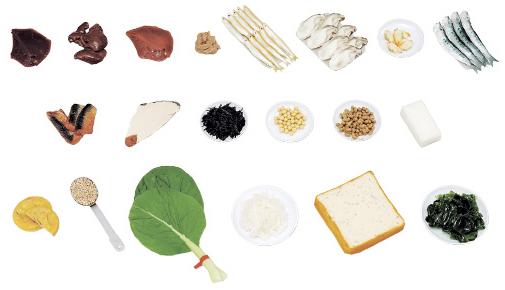 鉄分を多く含む食品モデル 規格:20品セット(磁石付) 24-4512-00
