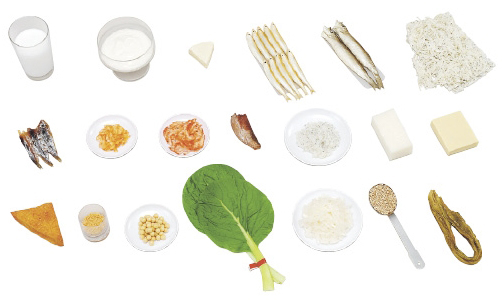 カルシウムを多く含む食品モデル 規格:20品セット(磁石付) 24-4513-00