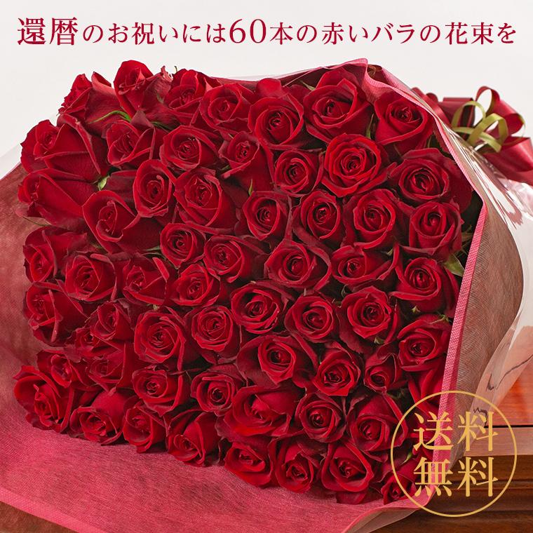 バラの花束 60本