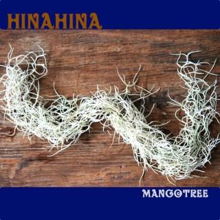 mangotree hinahina hinahina spanish moss 1 bunch rakuten